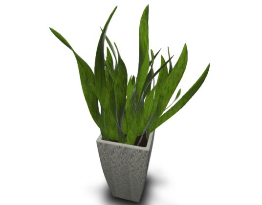 004-绿植模型-YSLV-004_SU2013